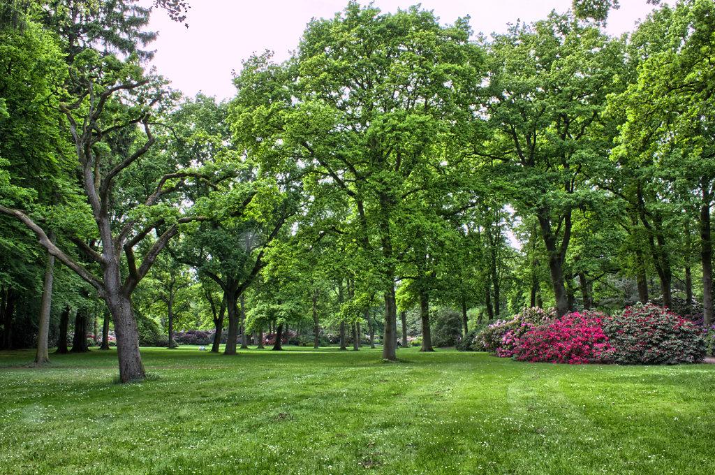 Parklandschaft Rhododendron-Park Bremen